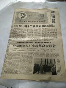 哈尔滨战报1968年1月15日