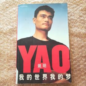 我的世界我的梦:A Life in Two Worlds (Wo de shi jie wo de meng) (Chinese)