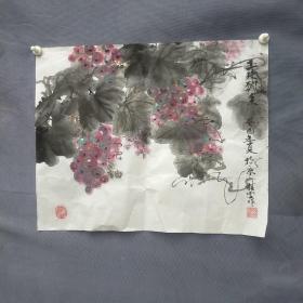孙桂云  画葡萄