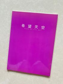 希望天空中国油画新新力量2008年展