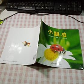幼儿园早期阅读资源《幸福的种子》中班(上)小瓢虫