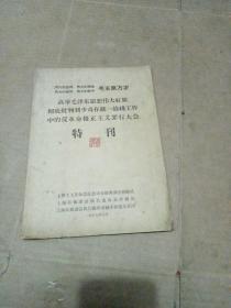 高举毛泽东思想伟大红旗 特刊
