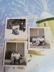 佛山老照片  1979年佛山祖庙老照片3张