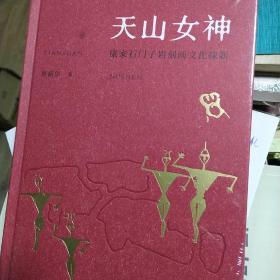天山女神:康家石门子岩刻画文化探新
