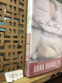 One True Thing:A Novel