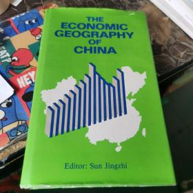 the economic geography of china