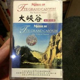 【老磁带收藏】大峡谷 自然之声 西海民族音像出版社【图片为实拍,品相以图片为准】