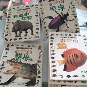 目击者丛书:奇妙的加成,奇妙的鱼,奇妙的有毒动物,奇妙的猛禽,奇妙的动物宝宝,奇妙的青娃和蟾蜍,奇妙的蝙蝠,奇妙的熊!奇妙的昆虫,奇妙的有盔甲动物,奇妙的狼狗狐,奇妙的鳄鱼。(1一12册)