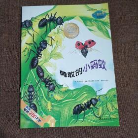 小海绵科学童话:勇敢的小蚂蚁注