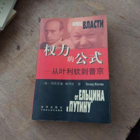 权力的公式--从叶利钦到普京