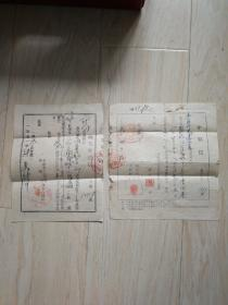 1951年职业介绍信、1952介绍信