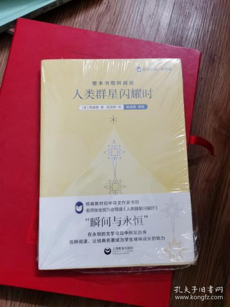 整本书思辨阅读:《人类群星闪耀时》