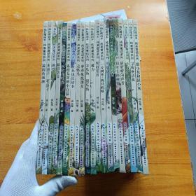 杨红樱画本纯美童话系列:20册全  精装【内页干净  未使用过】