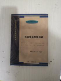 东辛复杂断块油藏(精装带书衣1版1次)
