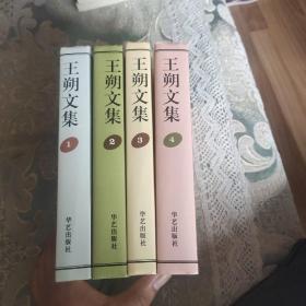 王朔文集全四册