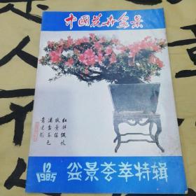 中国花卉盆景两本