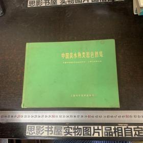 中国海洋鱼类原色图集 第一集【精装 没有书衣】