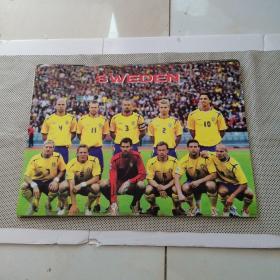 足球海报30张 和售 请看图(长57  宽42)9品弱点点