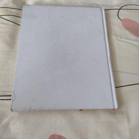 宫崎骏的画文集 龙猫的居所 增补修订中文版