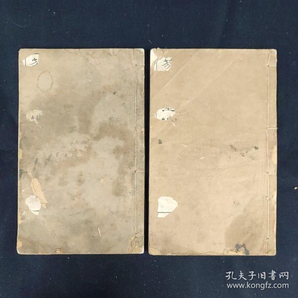 芥子园画传(存青在堂竹谱下、梅谱全、菊谱上)存两册 清刊
