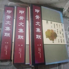 甲骨文集联 上中下三册
