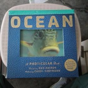 Ocean: A Photicular Book 光与影视觉书系列 会动的3D图片书 海洋【品相好】