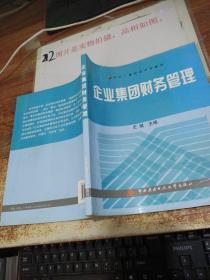 中央广播电视大学教材:企业集团财务管理