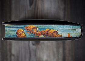 《大船航向》特装版本 书口全彩喷绘,限量编号,附赠藏书票一枚。从近代中国航运切入,细剖1860-1937年间中外政府、航运企业之间的合作与角力,开启认识近代中国的新视角。