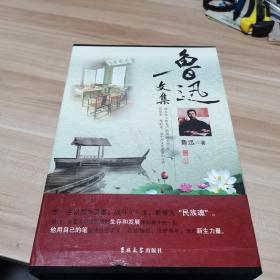 鲁迅文集(全4卷)内页干净