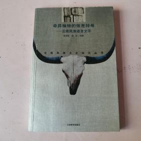 奇异独特的信息符号——云南民族语言文字