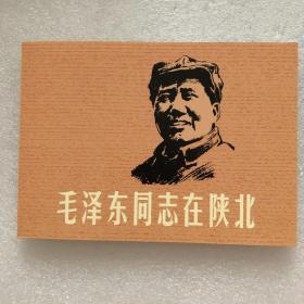 毛泽东同志在陕北32开平装连环画(日出东方散本)