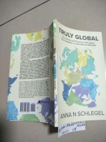 TRULY GLOBAL : the Theory and Practice of Bringing Your Company to International Markets  (没勾画