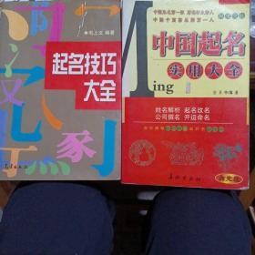 起名技巧大全•中国起名实用大全(2册)
