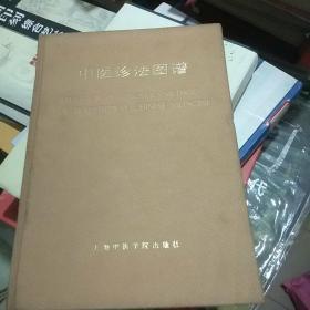 中医诊法图谱(外加一张购书发票)