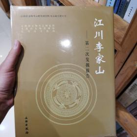 江川李家山:第二次发掘报告