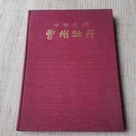中华之最曹州牡丹