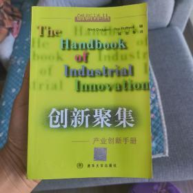 (正版现货)创新聚集:产业创新手册