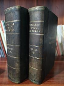 1902年- FAMILIAR WILD FLOWERS《常见野花图谱》7册集于2大本,布面精装,280枚套色版画野花图谱