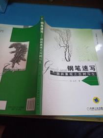 钢笔速写:园林景观之百树写生