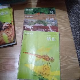 小聪仔自然--- 马、蜻蜓、螃蟹、犀牛、花衣服【5册合售】