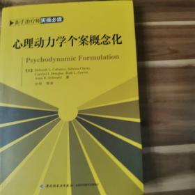 心理动力学个案概念化(万千心理)