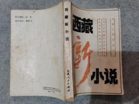 西藏新小说