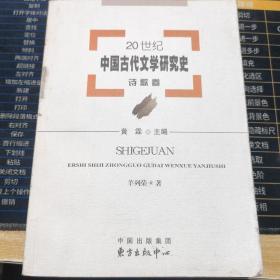 20世纪中国古代文学研究史:诗歌卷【一版一印 内页干净】正版现货