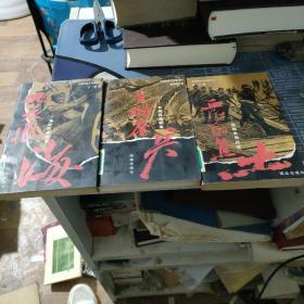 中国抗战大写真系列(雪红的焦土)(长城鏖冰)(愁天恨海)三本合售