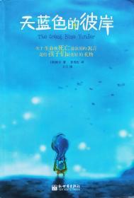 希尔《天蓝色的彼岸:关于生命和死亡最深刻的寓言》05年1版5印,正版9成新