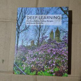Deep Learning (Ian Goodfellow, Yoshua Bengio and Aaron Courville)英文原版   71-556-99-09