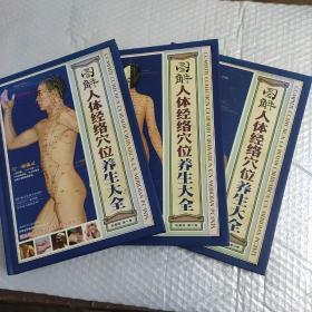 图解人体经络穴位养生大全(全三卷)彩图板