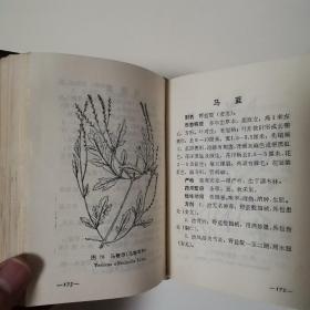贵州草药(第一集)〈1970年贵州初版发行〉