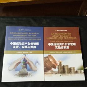 中国保险资产负债管理实践探索集+中国保险资产负债管理监管、实践与发展