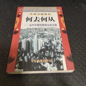 何去何从:当代中国的国有企业问题